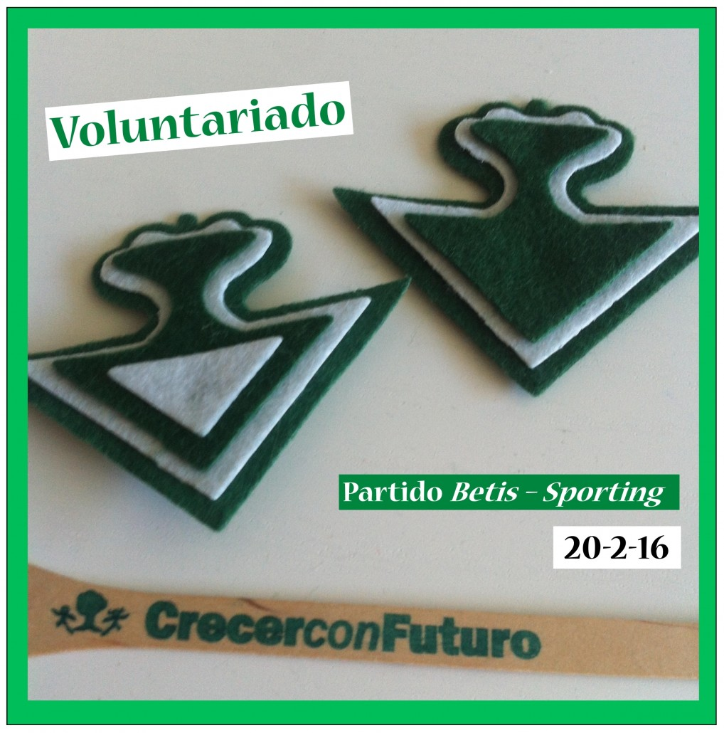 Voluntariado Betis - Sporting