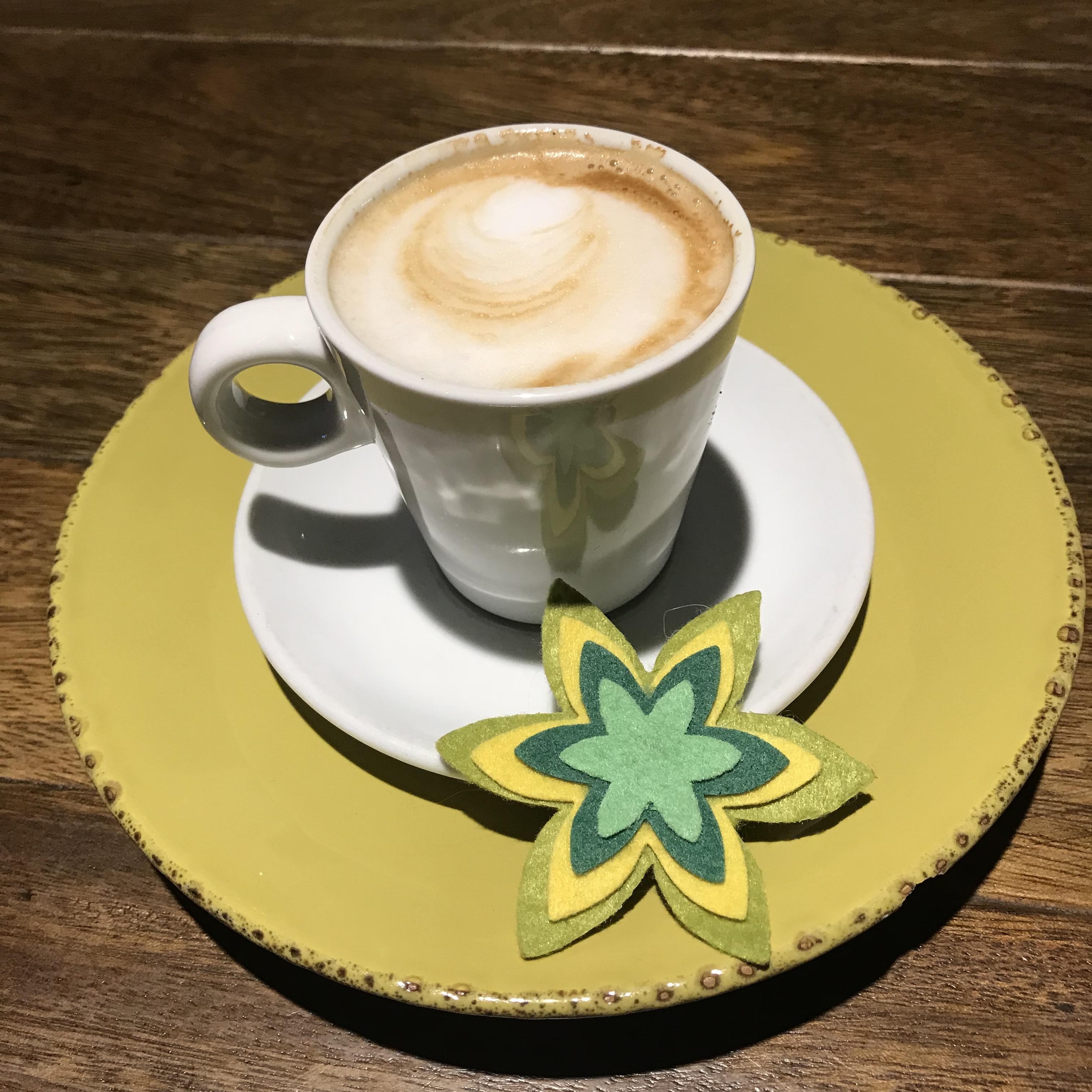 Café Informativo Familias Colaboradora